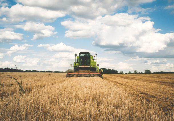 graan-van-het-land
